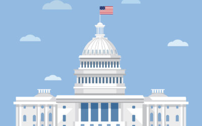 Big Government, Small Business:  A Guide to the SBIR and STTR Programs